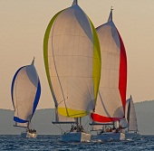 Offshore Sailing Week